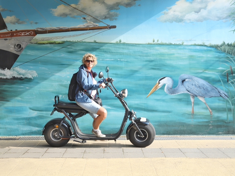 Dolly Bruijs, e-chopper, 40plusvriendinnen, have fun events, mural, reiger, boot, zuid-holland
